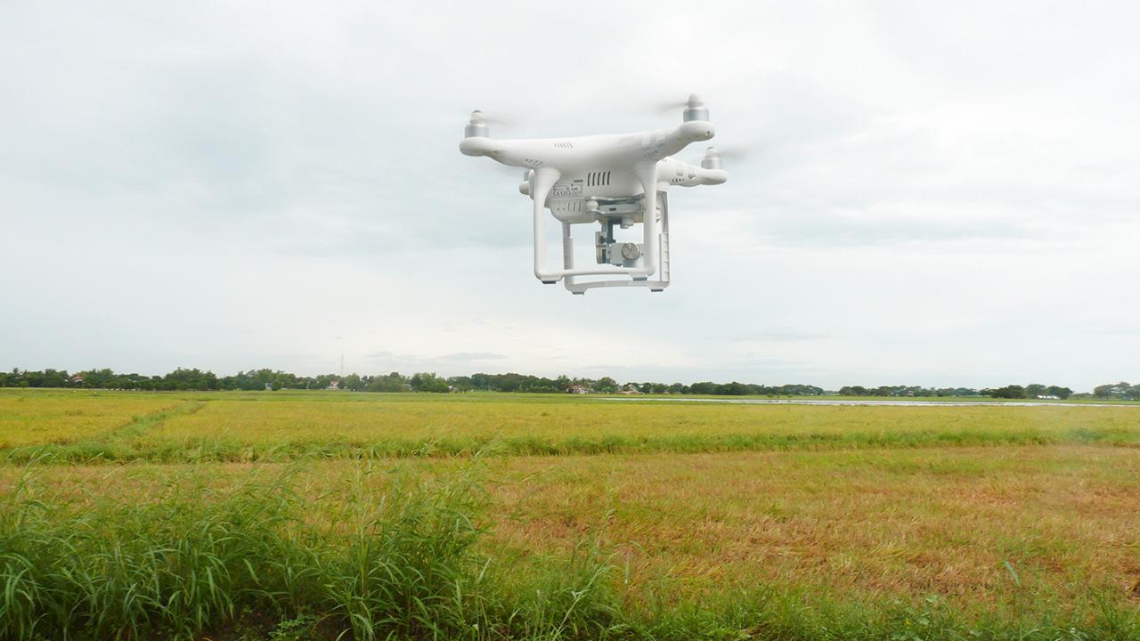Premio nobel trabajará por digitalización de la agricultura