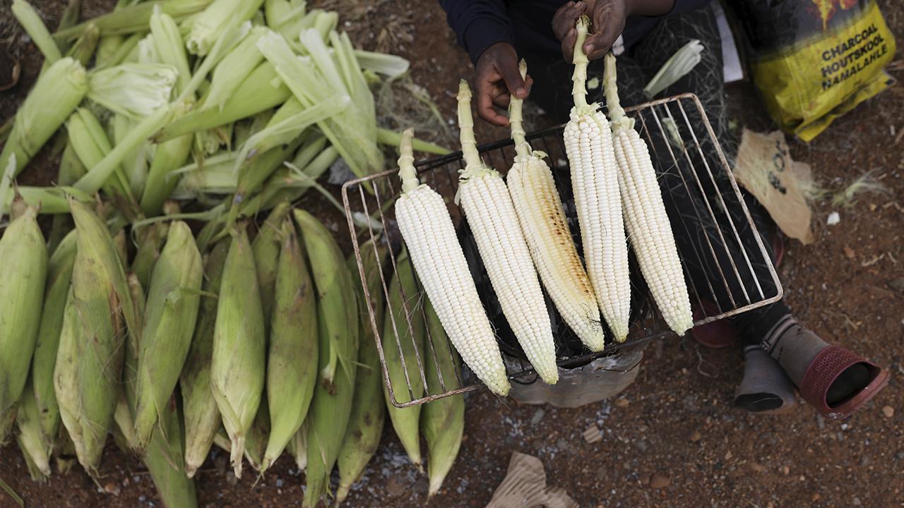 Costa Rica lanza su primer laboratorio de innovación para agricultura