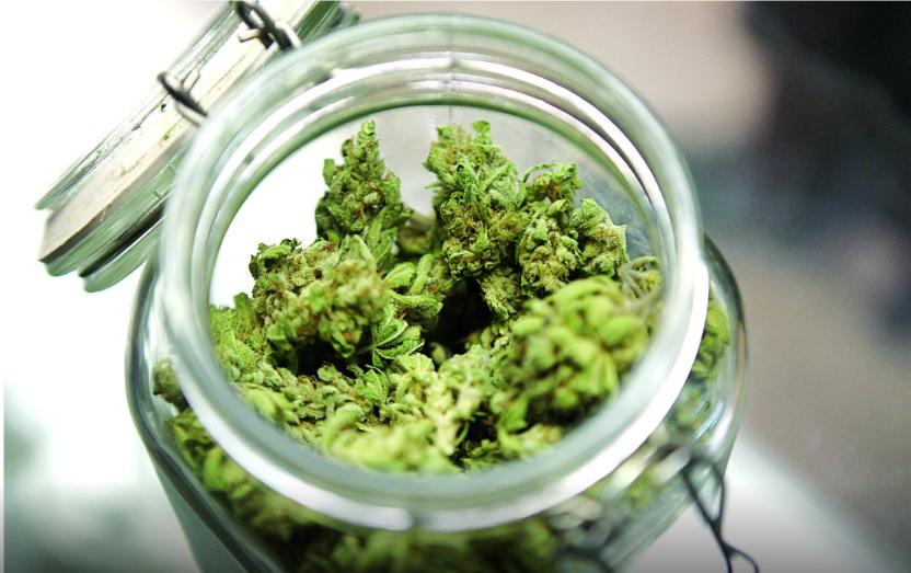 Costa Rica decomisa cargamento con 996 kilos de marihuana en zona sur