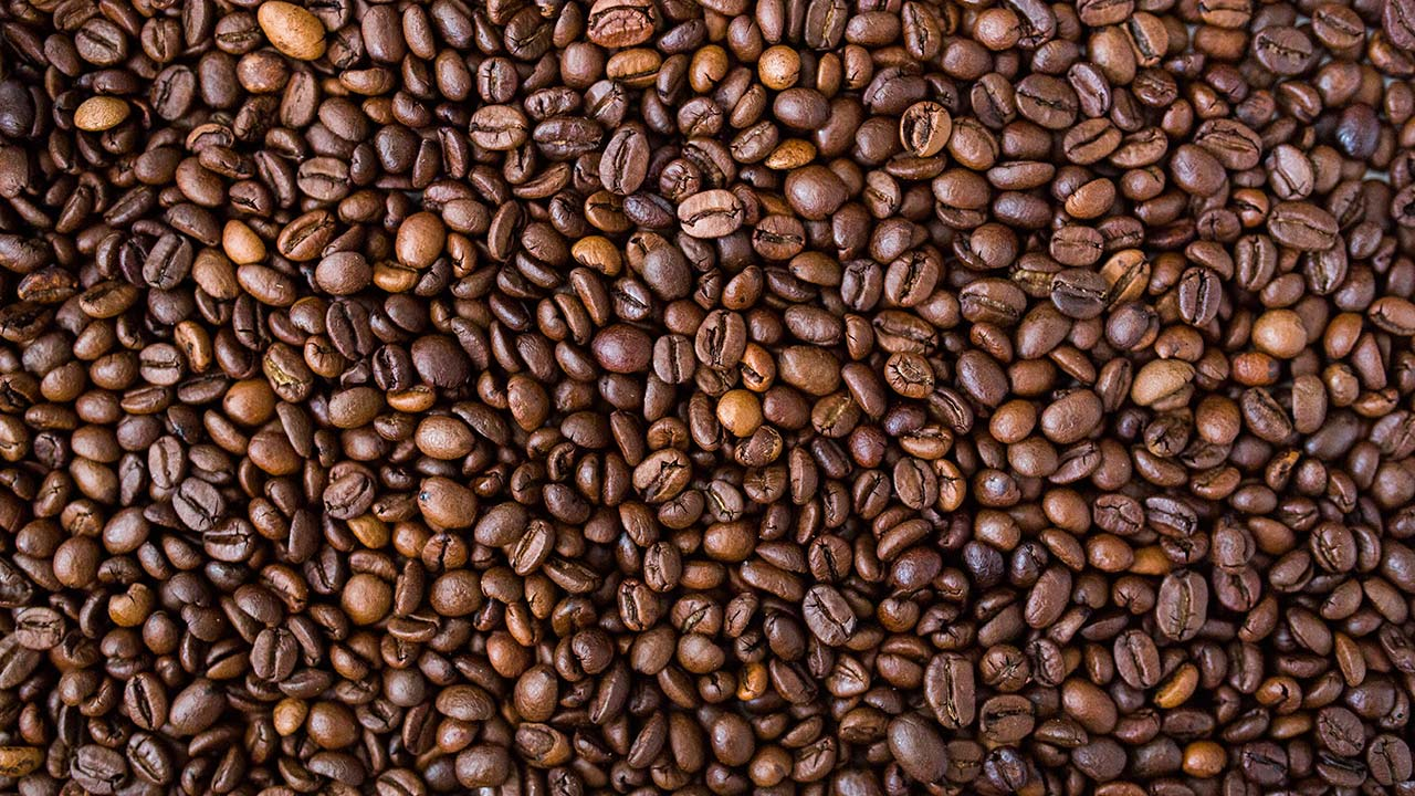 Honduras busca 350,000 personas para recoger café en período más productivo