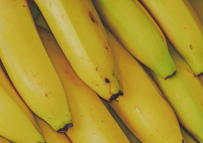 Costa Rica aumentó las exportaciones de banano un 7% pese a pandemia