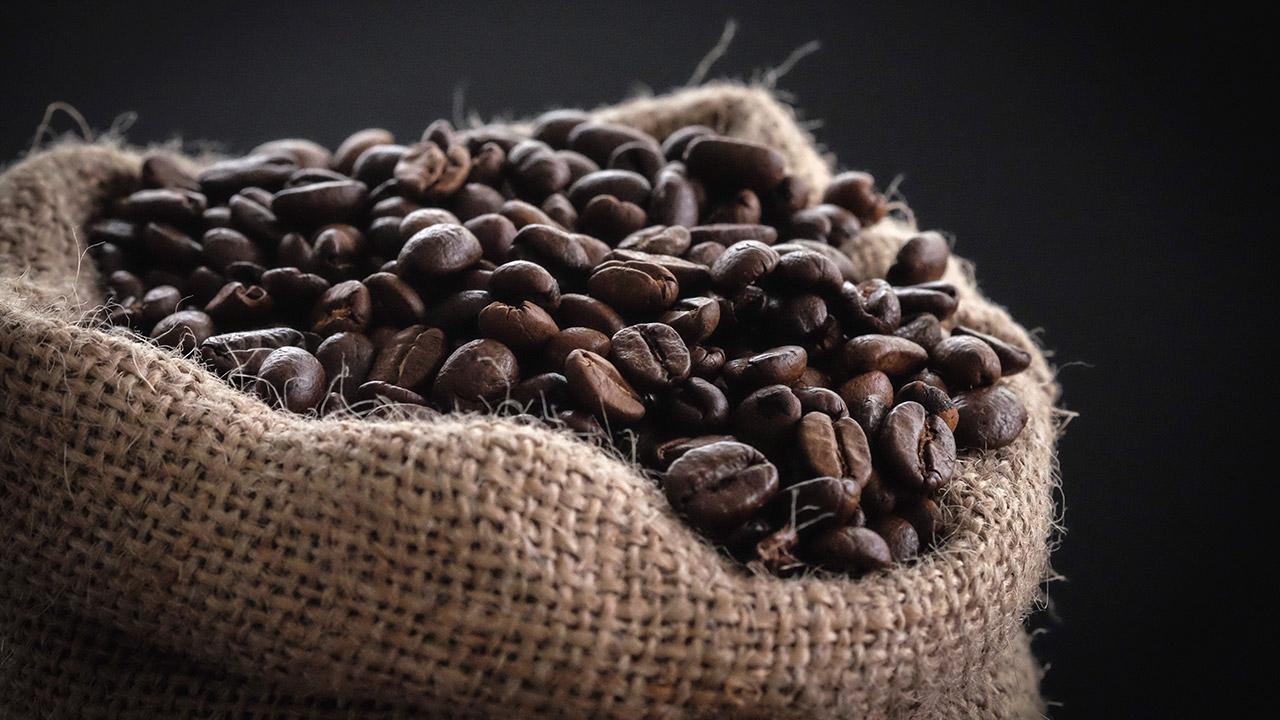 Cosecha de café en El Salvador disminuyó 15%