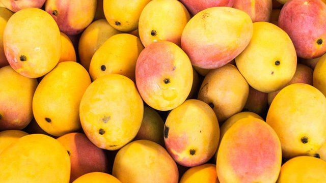 Cosecha de mango en Guatemala crece 15% y aumenta su mercado en el extranjero