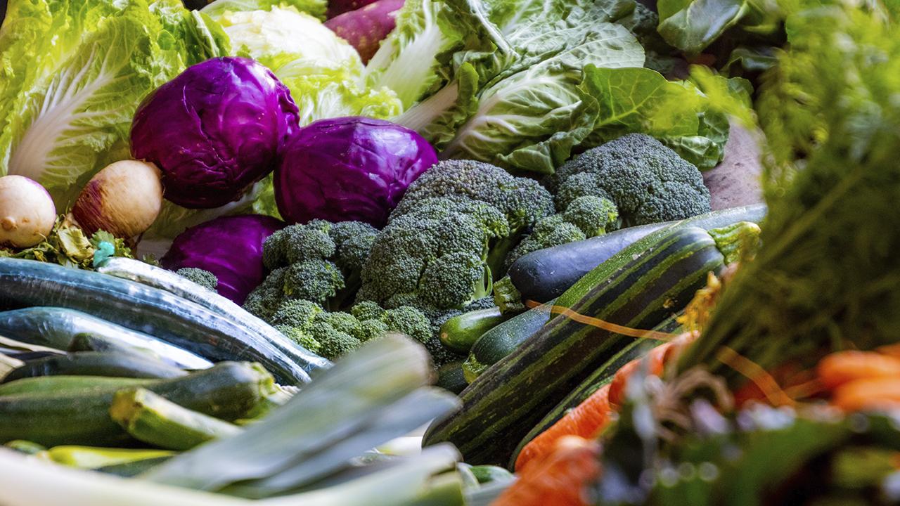 Honduras inaugura planta exportadora de vegetales única en Centroamérica