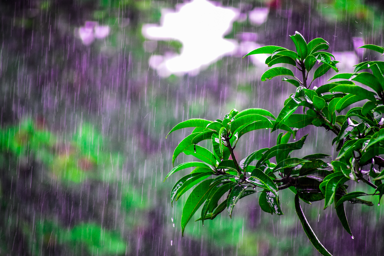 Alerta en Centroamérica por intensas lluvias