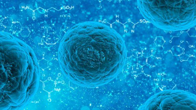 Tumores cerebrales consiguen 'esquivar' quimioterapias: estudio