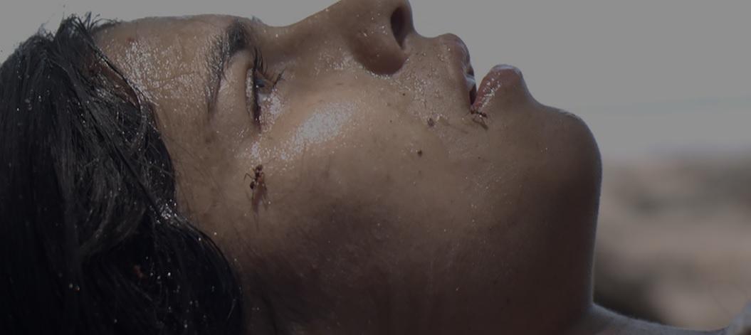 'El despertar de las hormigas' de Costa Rica es nominada a los premios Goya 2020
