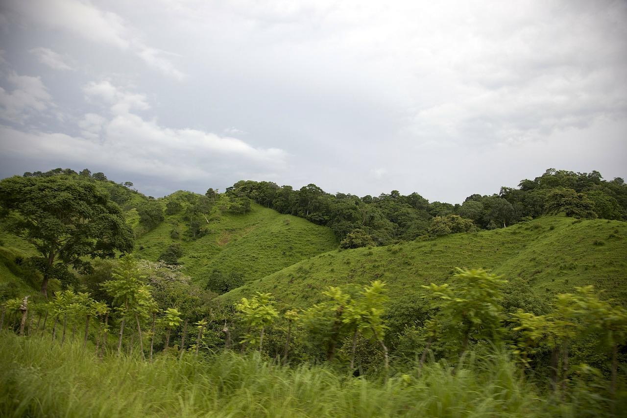 Panamá aprueba titulación colectiva de tierras indígenas, y es pionera en América