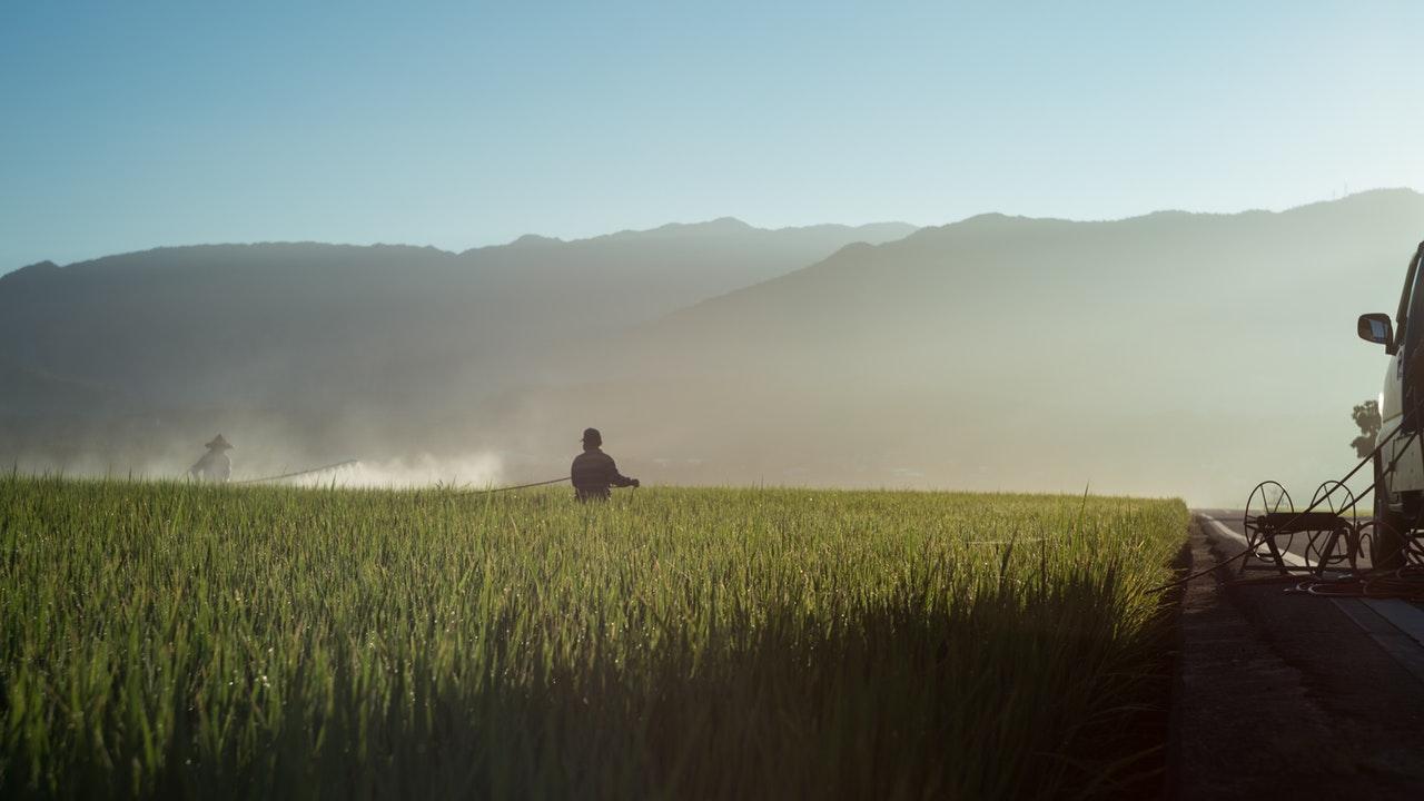 Costa Rica prohíbe uso de herbicida glifosato en áreas silvestres protegidas