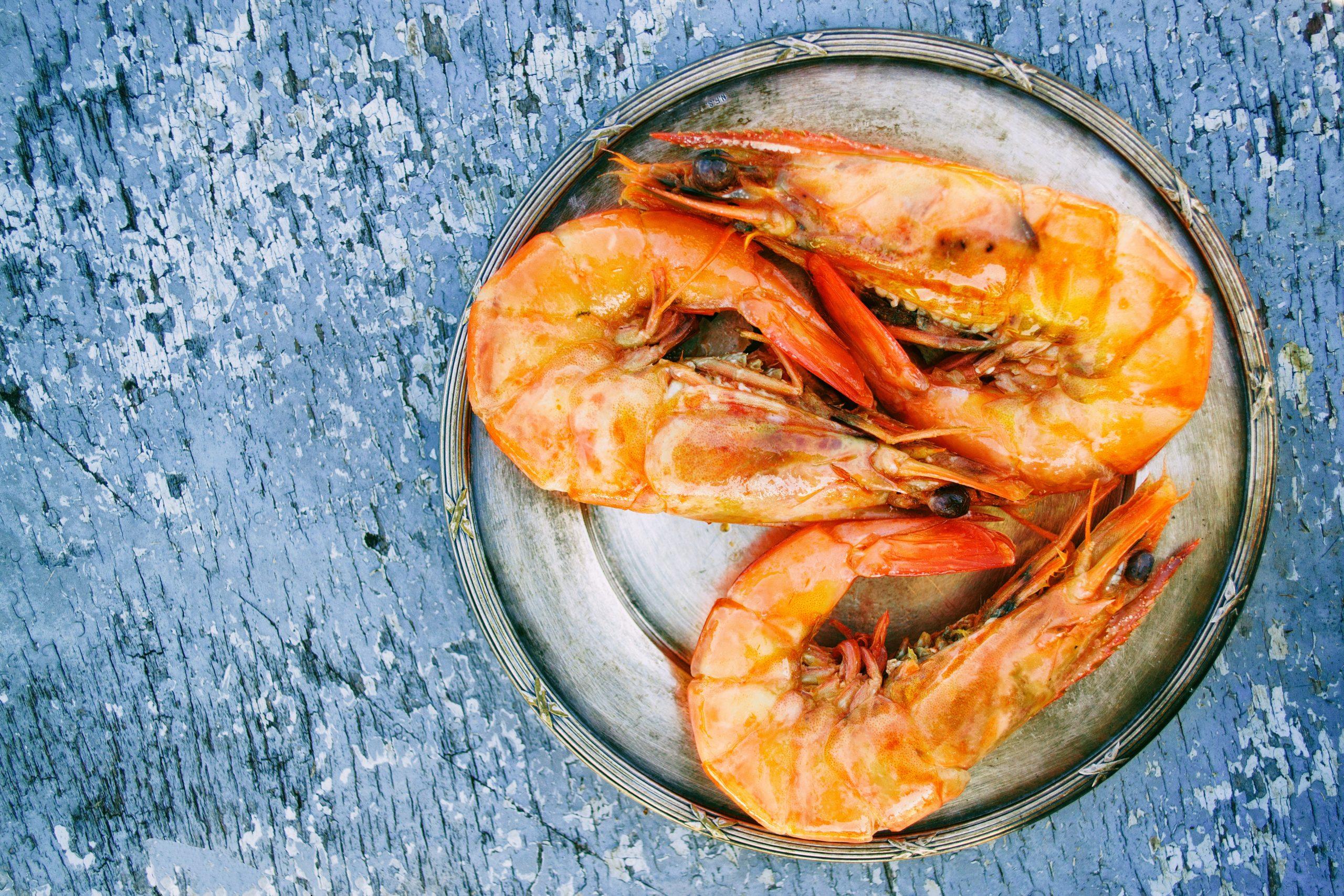 """Advierten que se la pesca de camarón en El Salvador está en estado de """"colapso"""""""