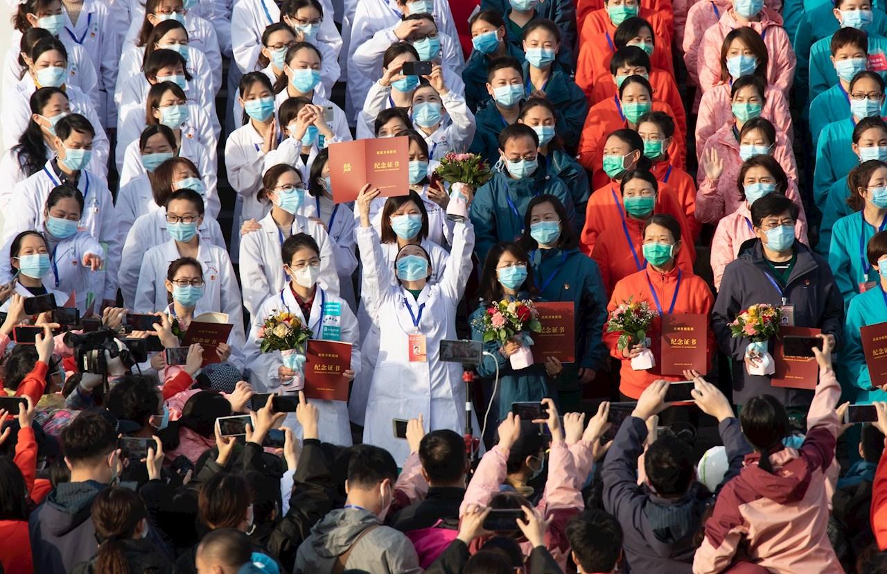 Científicos chinos alertan de gripe porcina, capaz de provocar otra pandemia