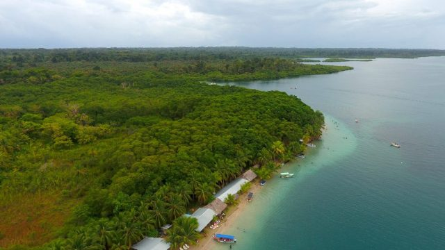 Playa estrellas Panamá