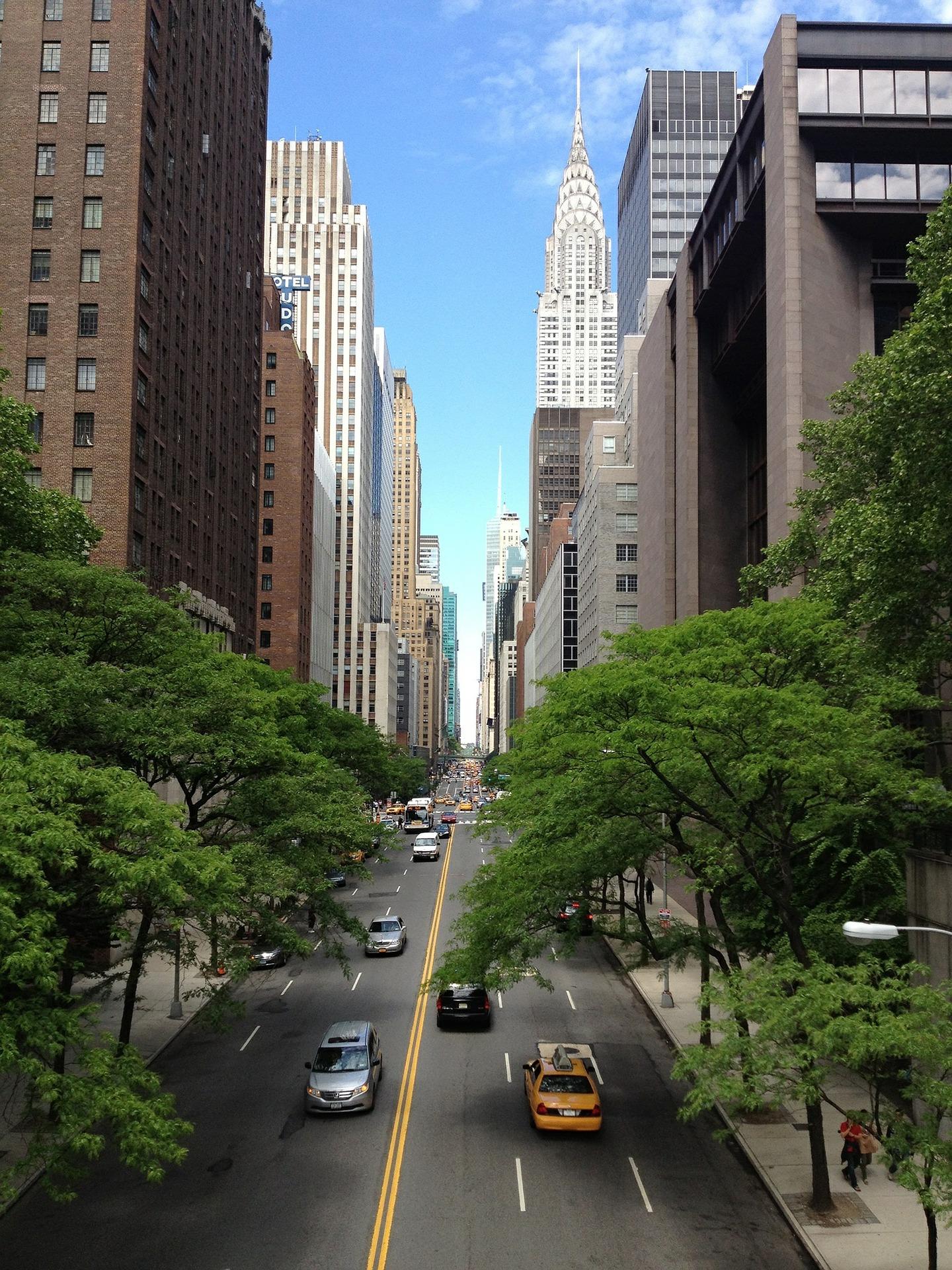 Urbes verdes: necesitamos más que nunca árboles en las ciudades