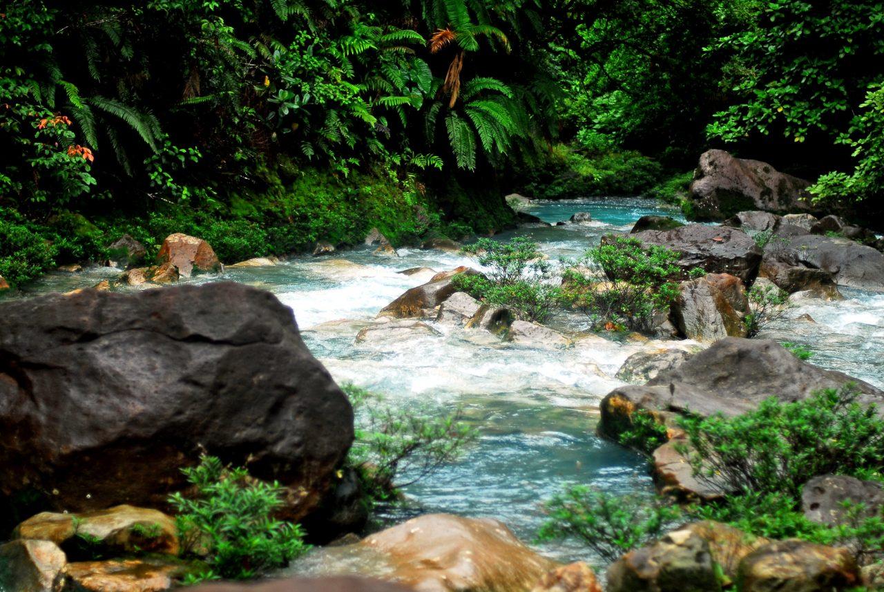 Costa Rica cierra el año más duro para el turismo y busca la reactivación