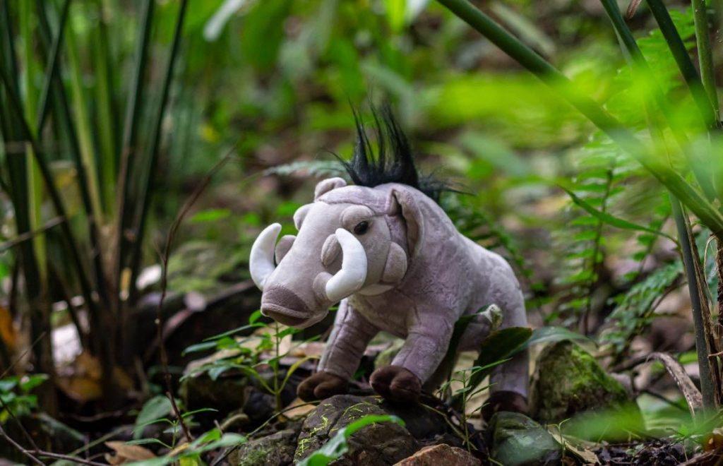 peluches fauna centroamérica