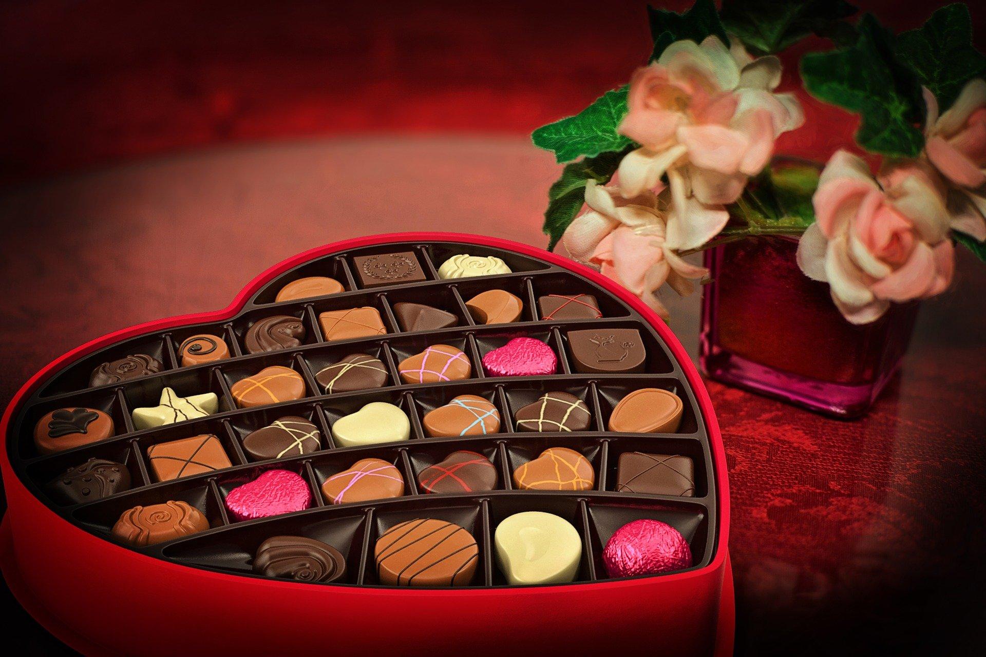 Industria chocolatera suiza es vinculada con deforestación global: organización WWF