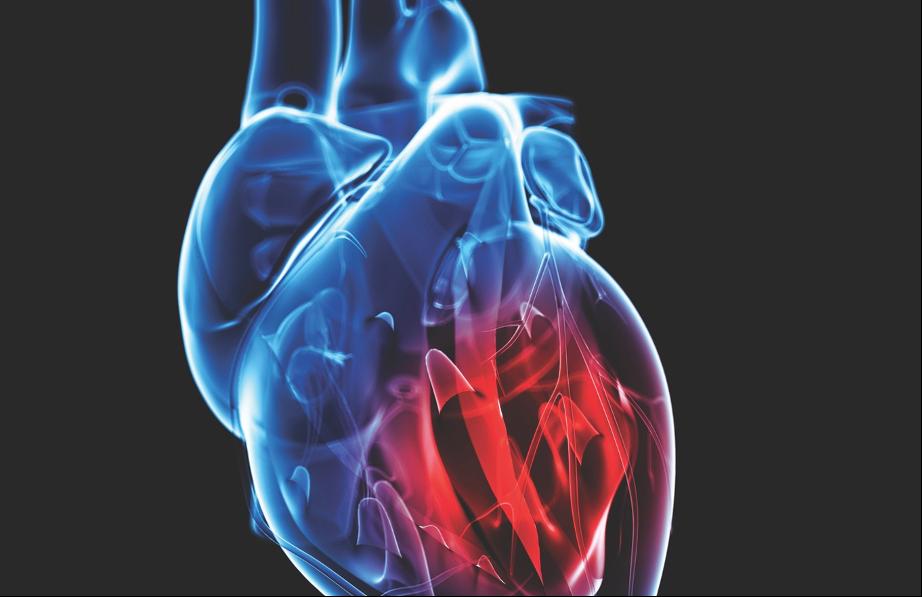 Medicina cardiovascular: una carrera por mejorar los motores dañados