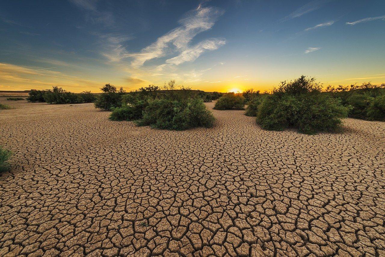 El Nobel Rattan Lal apuesta por una degradación cero del suelo en 2030