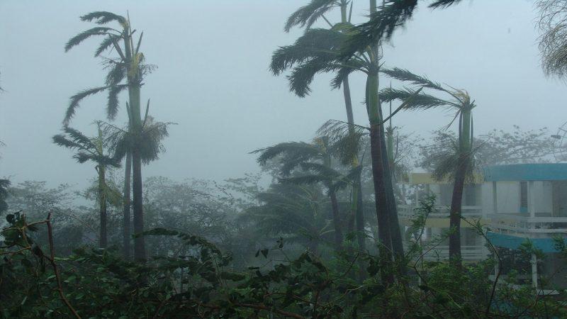 Honduras: Japón y la OIM se unen para ayudar a afectados por tormentas