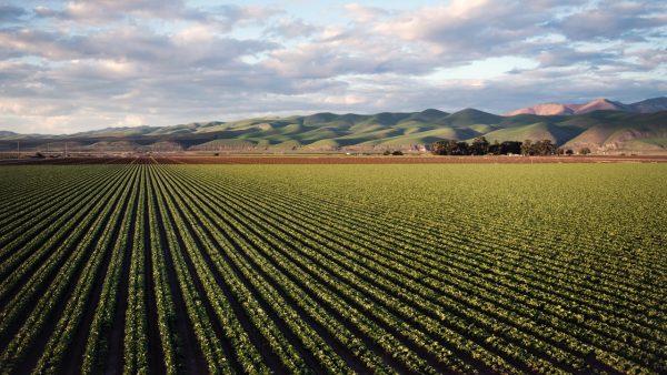 Costa Rica busca activar potencialidades económicas de las zonas rurales