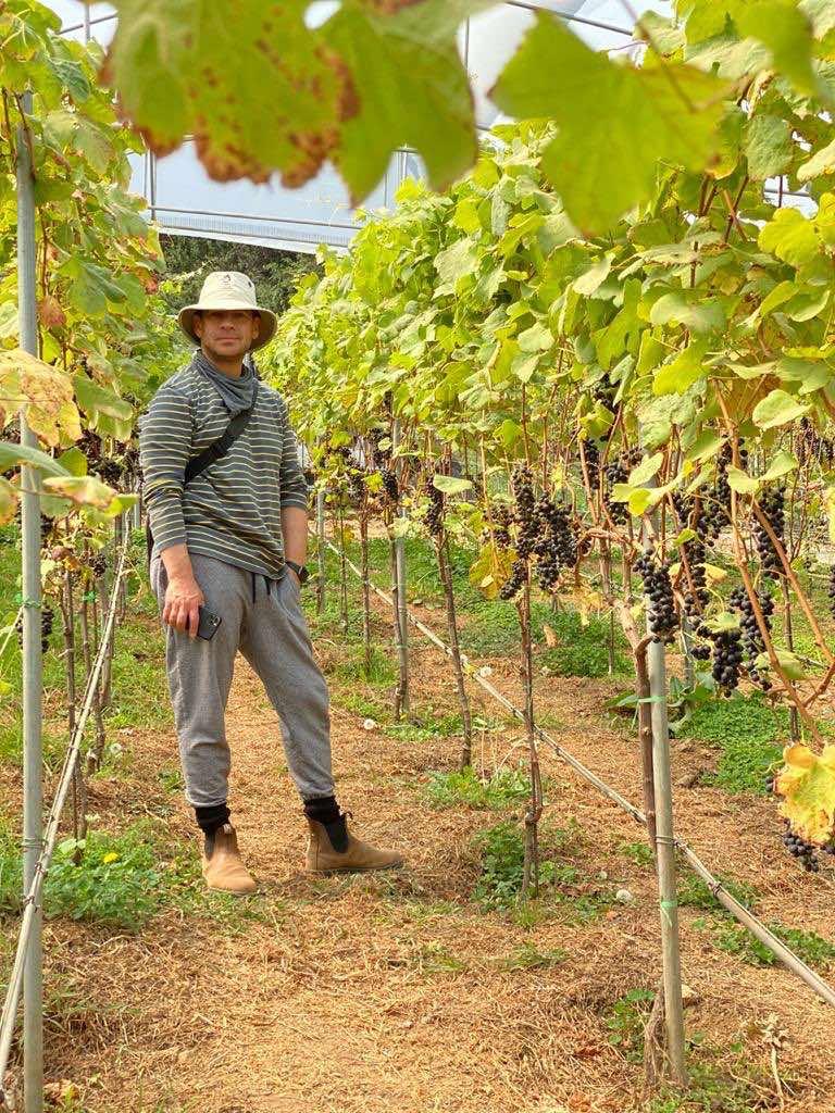 vino Malbec Costa Rica