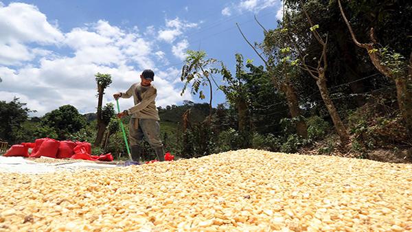 Centroamérica tiene casi 30 millones de pobres acechados por el hambre