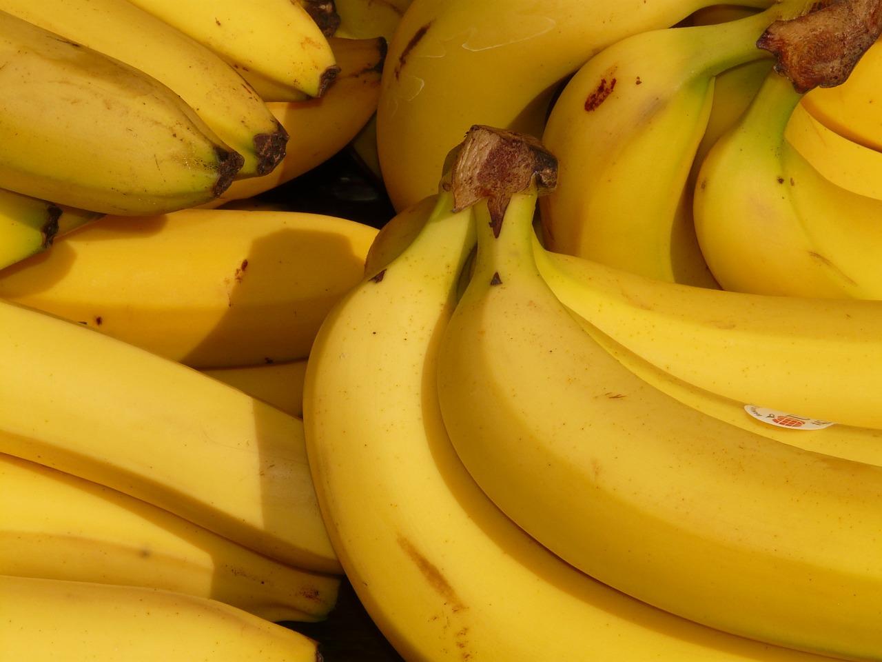 RD suspende importaciones de Colombia y Perú por hongo del banano
