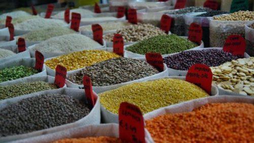 Monopolio de semillas: ¿quién controla el suministro mundial de alimentos?
