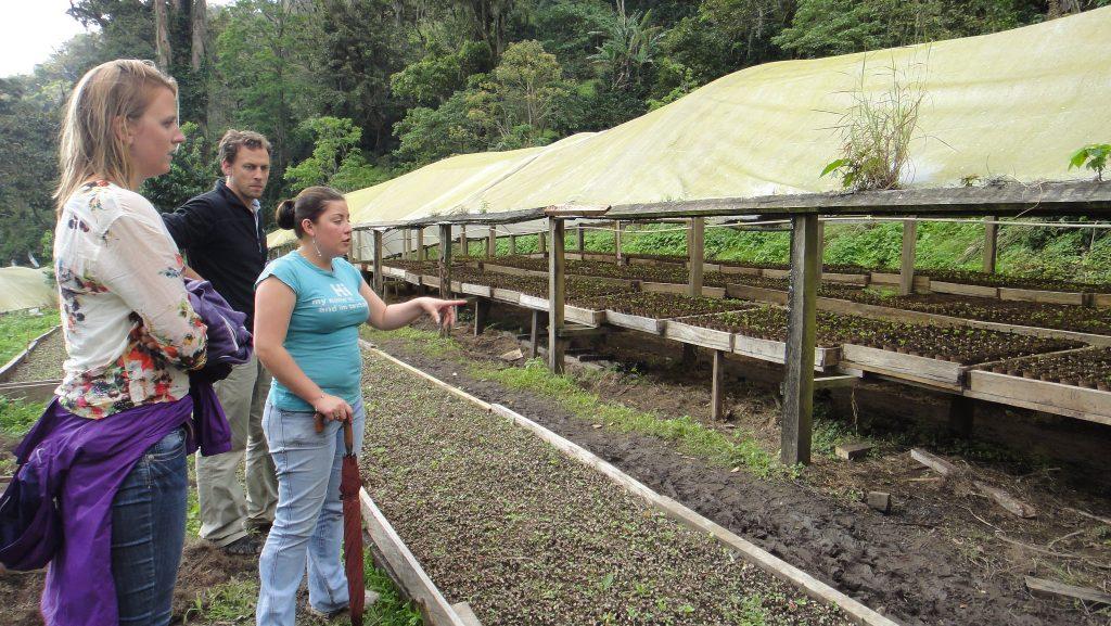 rutas del café Centroamérica