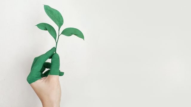 Emisión de Bonos Verdes en Costa Rica es una oportunidad de inversión