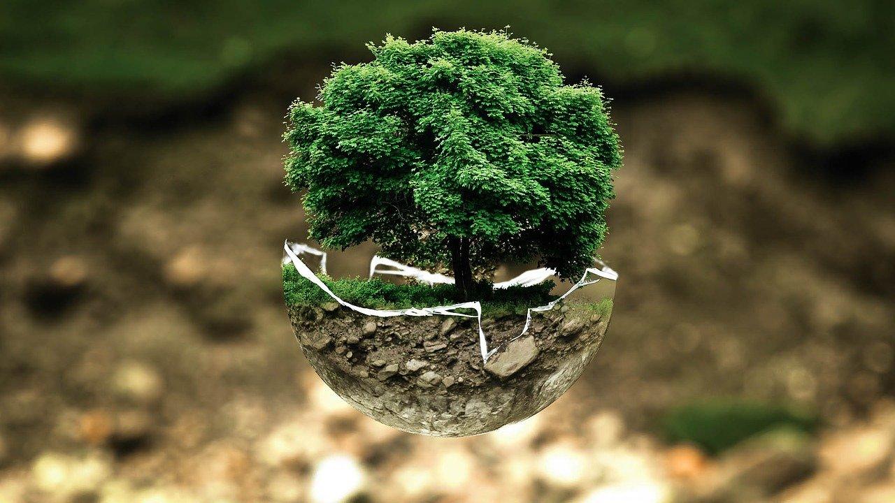 La reforestación en Nicaragua une al ser humano con la madre tierra