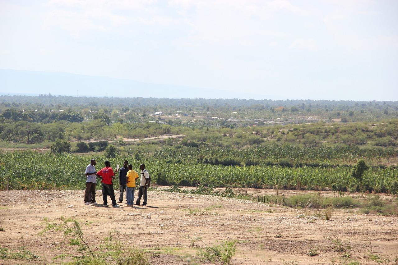 Las deportaciones y el éxodo de haitianos encarecen la comida en R.Dominicana