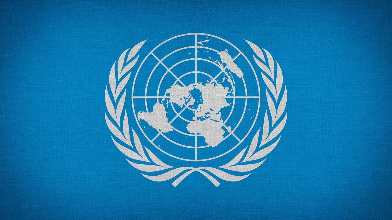 ONU alerta de creciente cerco a instituciones de derechos humanos en AL