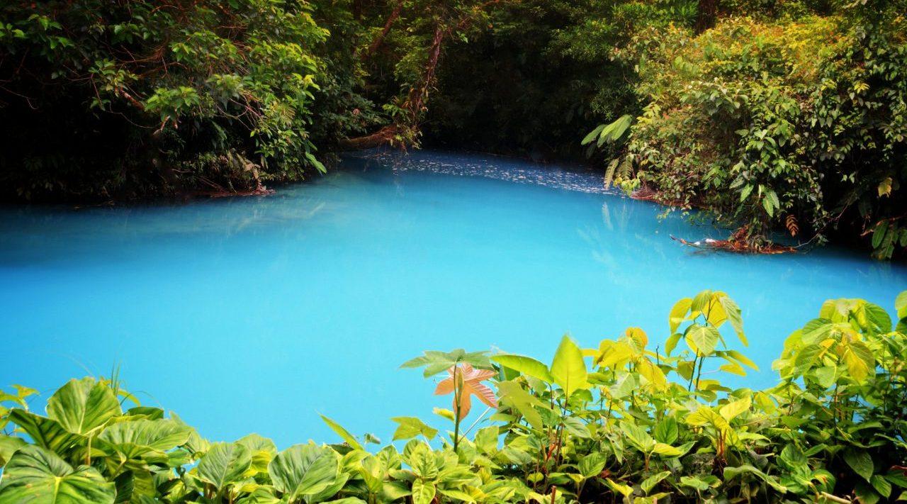 Este hotel de Costa Rica es el mejor para 'estadías safari': TripAdvisor