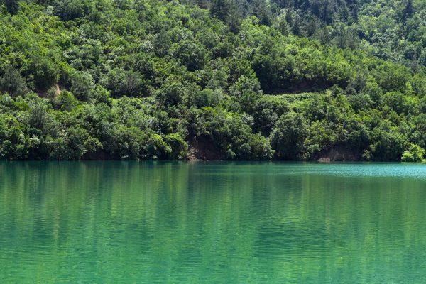 Los lagos pierden oxígeno por el calentamiento antes que los océanos